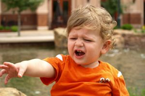 The myths of the terrible twos